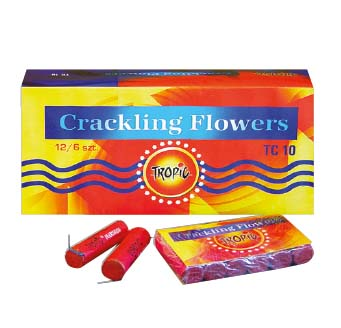 Roza TC10 5p x12/Crackling Flowers(240)